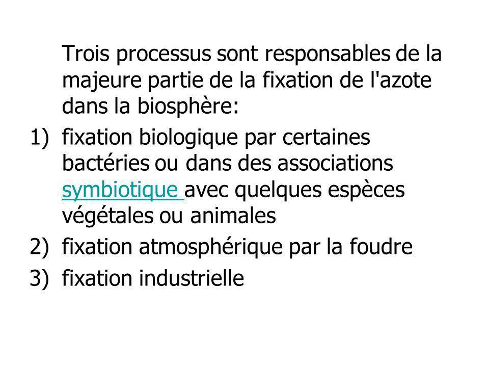 Trois processus sont responsables de la majeure partie de la fixation de l azote dans la biosphère: