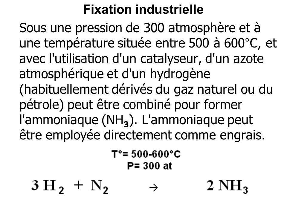 Fixation industrielle