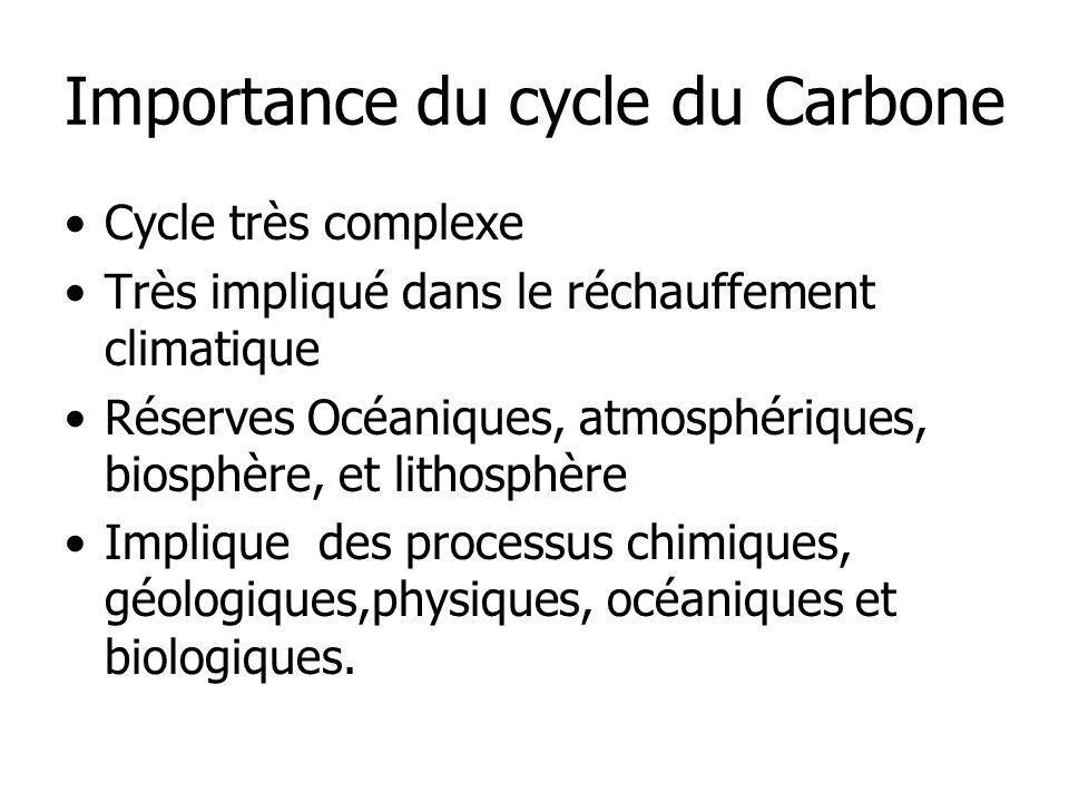 Importance du cycle du Carbone