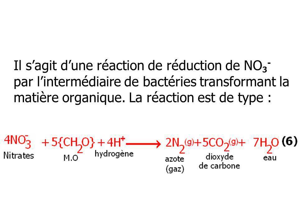 Il s'agit d'une réaction de réduction de NO3- par l'intermédiaire de bactéries transformant la matière organique.