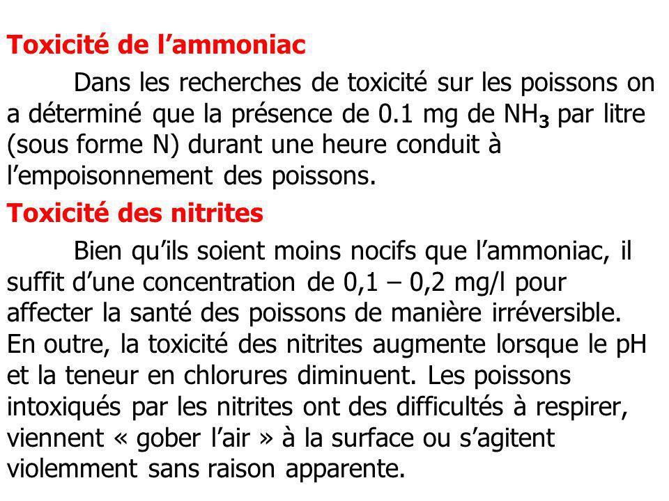 Toxicité de l'ammoniac