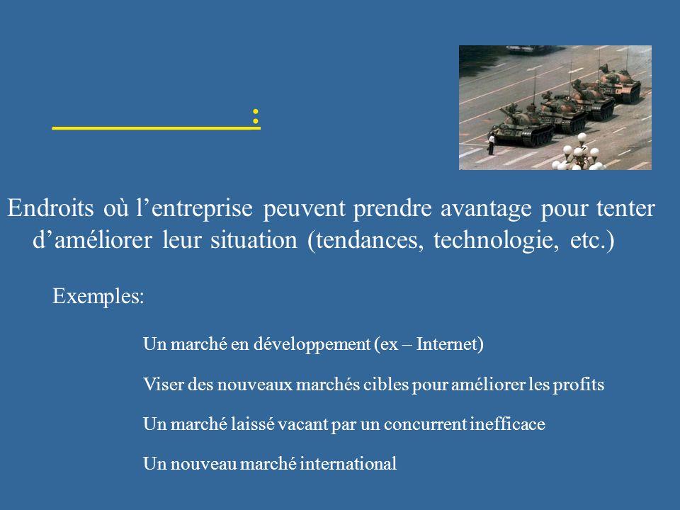 _____________: Endroits où l'entreprise peuvent prendre avantage pour tenter d'améliorer leur situation (tendances, technologie, etc.)