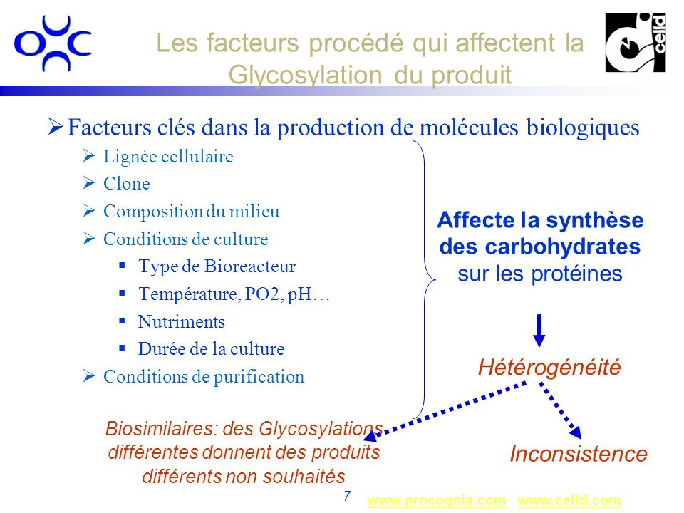 Les facteurs procédé qui affectent la Glycosylation du produit