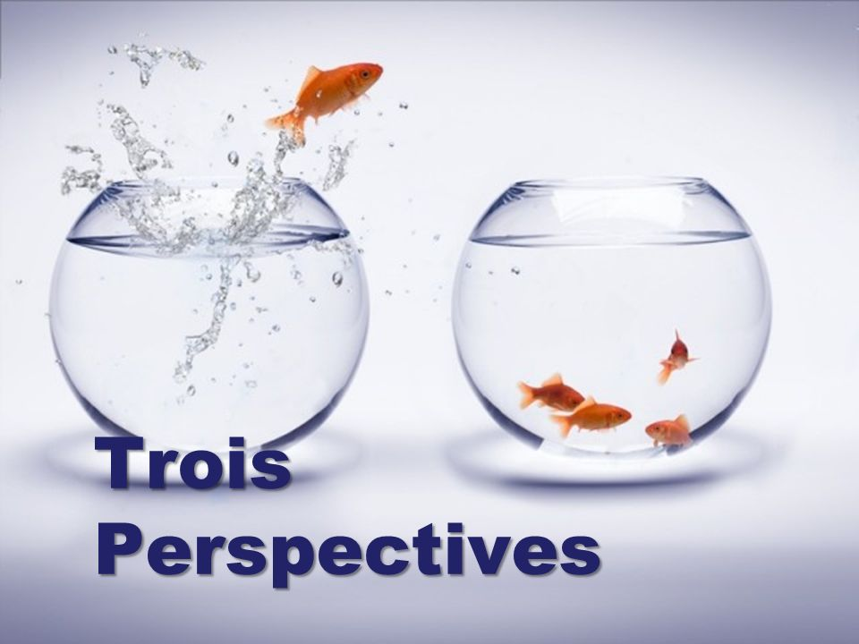 Trois Perspectives
