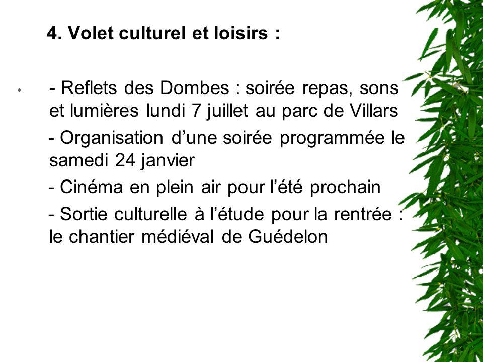 4. Volet culturel et loisirs :
