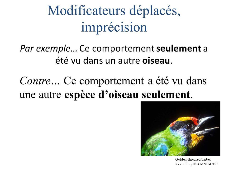 Par exemple… Ce comportement seulement a été vu dans un autre oiseau.