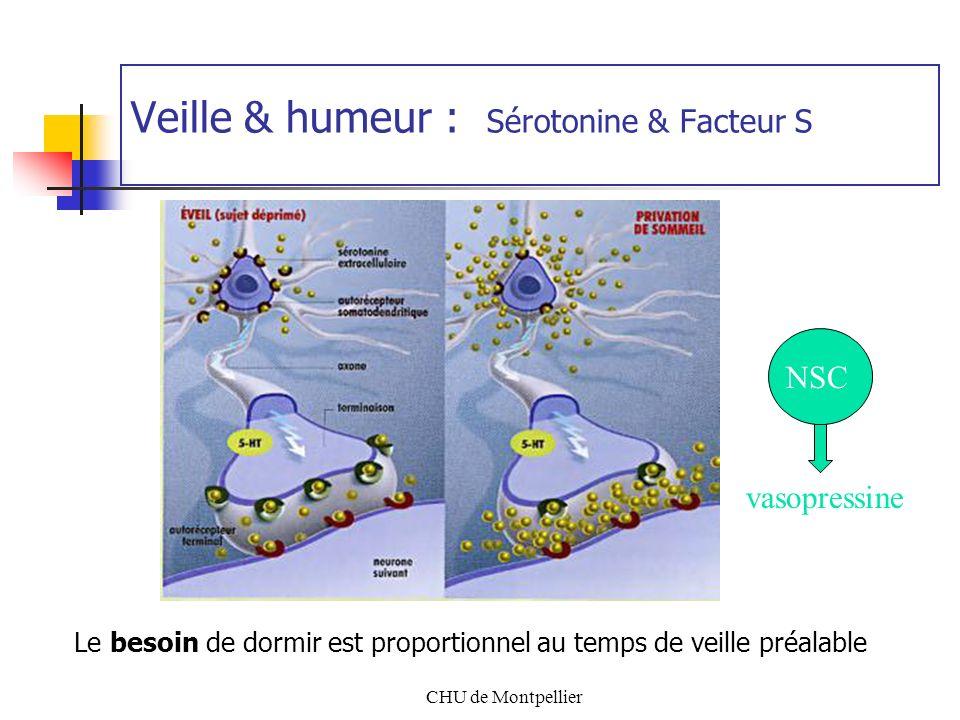 Veille & humeur : Sérotonine & Facteur S