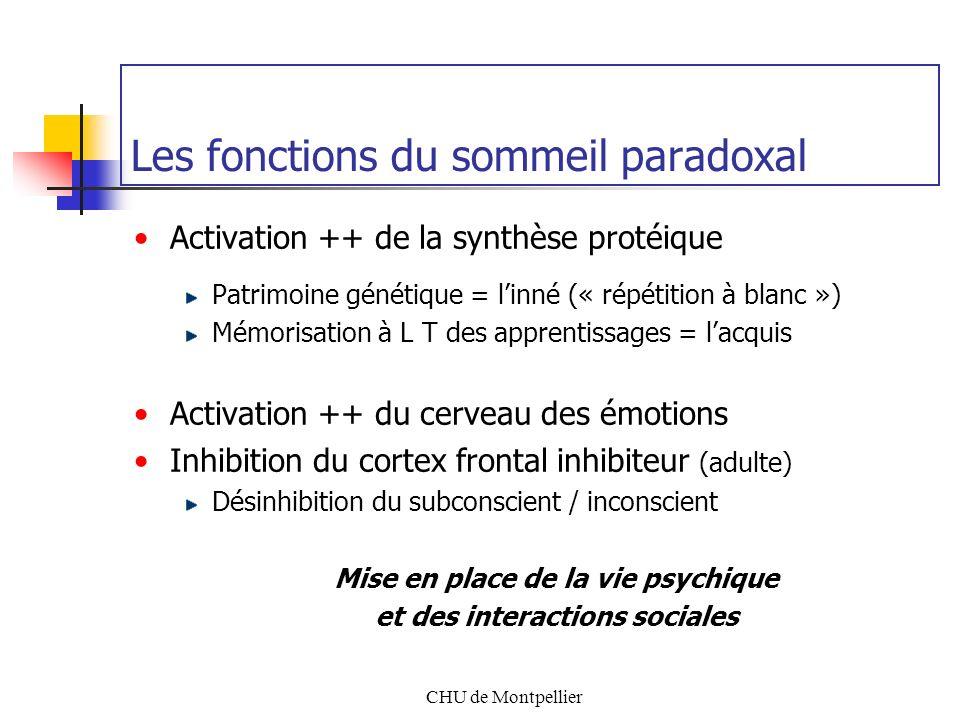 Les fonctions du sommeil paradoxal