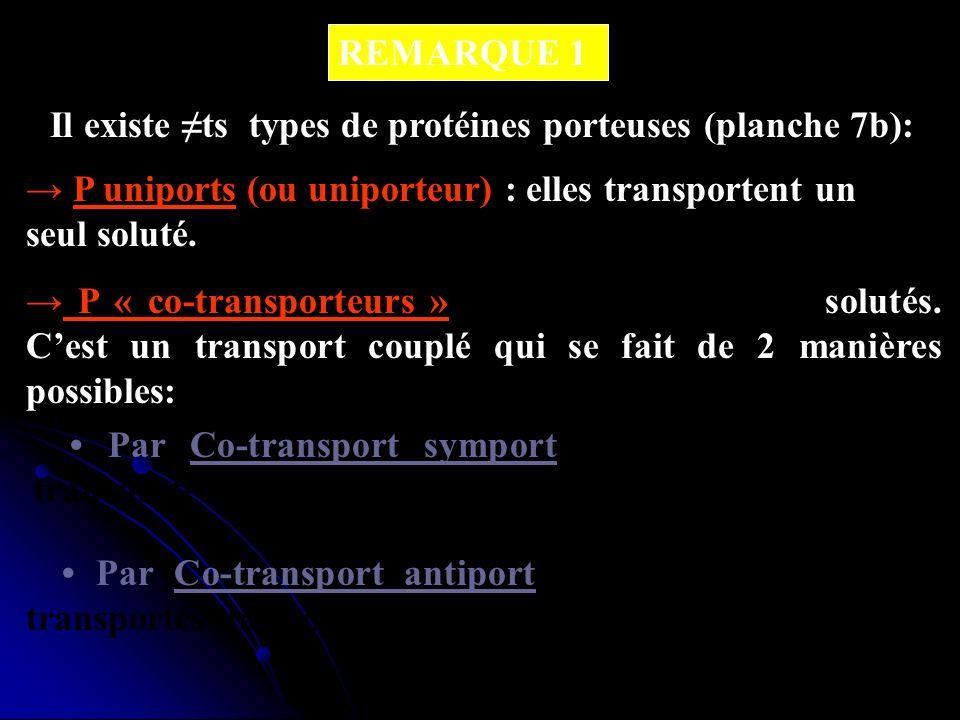 REMARQUE 1Il existe ≠ts types de protéines porteuses (planche 7b): → P uniports (ou uniporteur) : elles transportent un seul soluté.