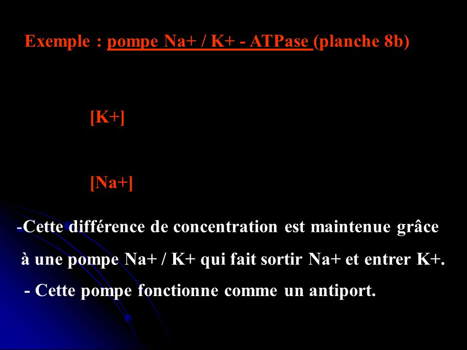 Exemple : pompe Na+ / K+ - ATPase (planche 8b)
