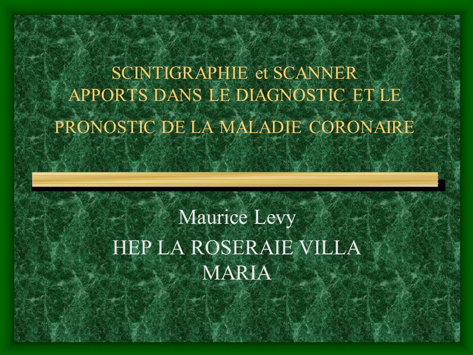 Maurice Levy HEP LA ROSERAIE VILLA MARIA