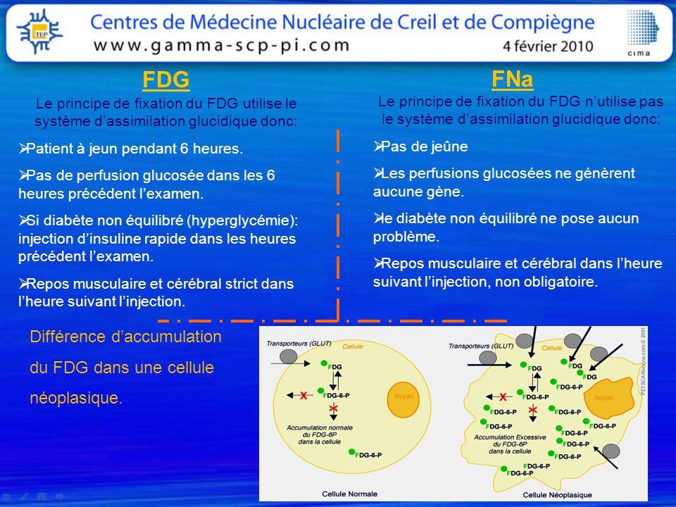 FDG FNa Différence d'accumulation du FDG dans une cellule néoplasique.