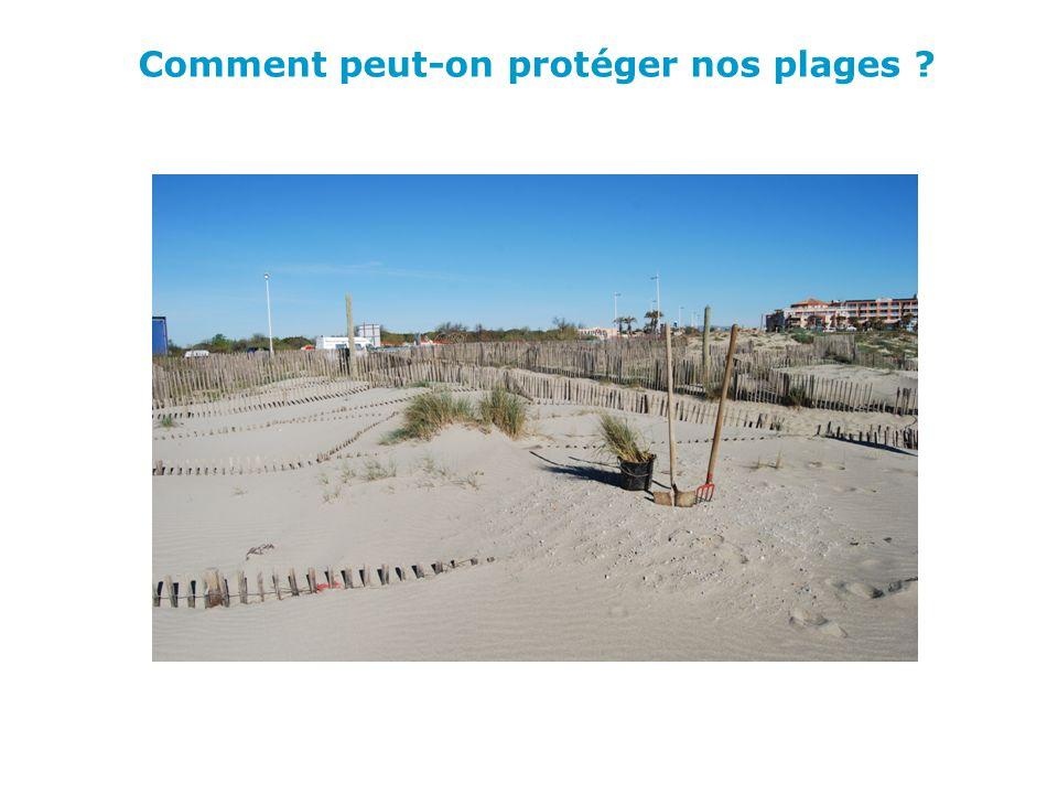 Comment peut-on protéger nos plages