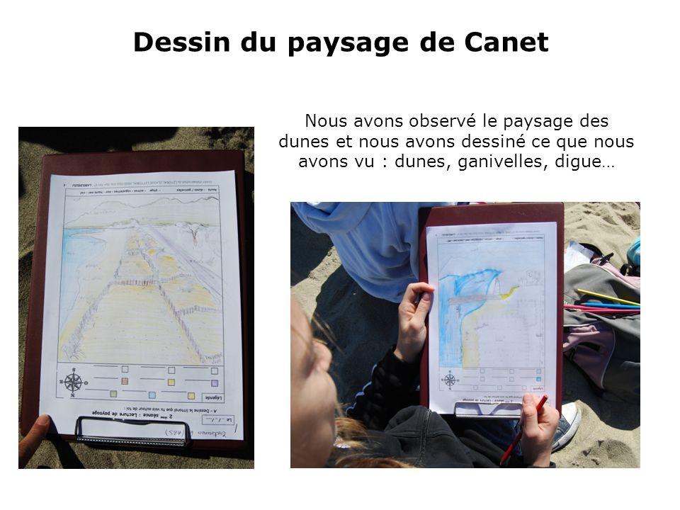 Dessin du paysage de Canet