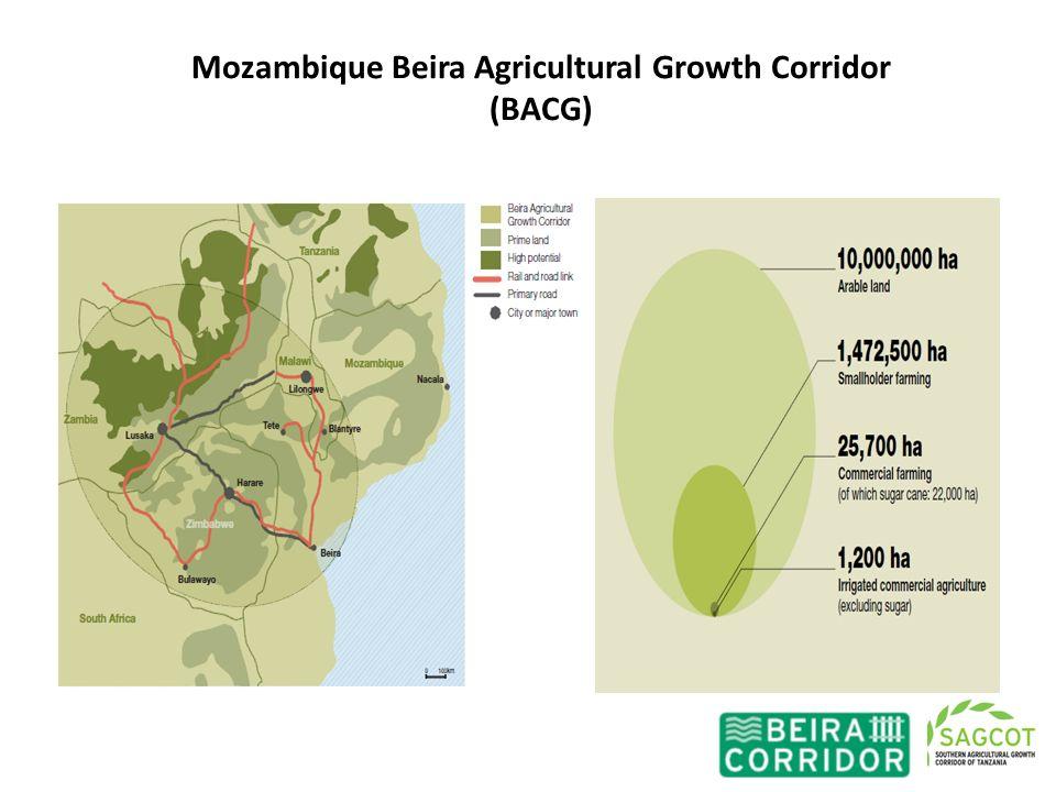 Mozambique Beira Agricultural Growth Corridor