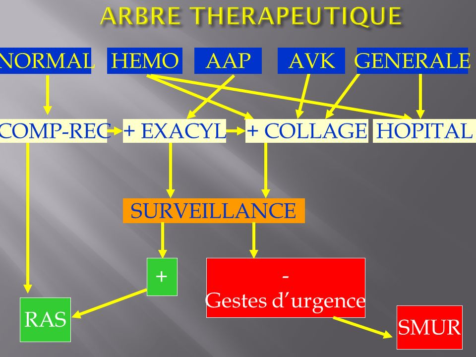 ARBRE THERAPEUTIQUE NORMAL HEMO AAP AVK GENERALE COMP-REC + EXACYL