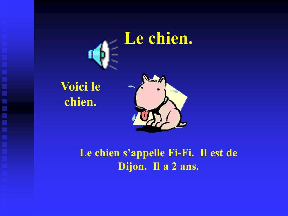 Le chien s'appelle Fi-Fi. Il est de Dijon. Il a 2 ans.