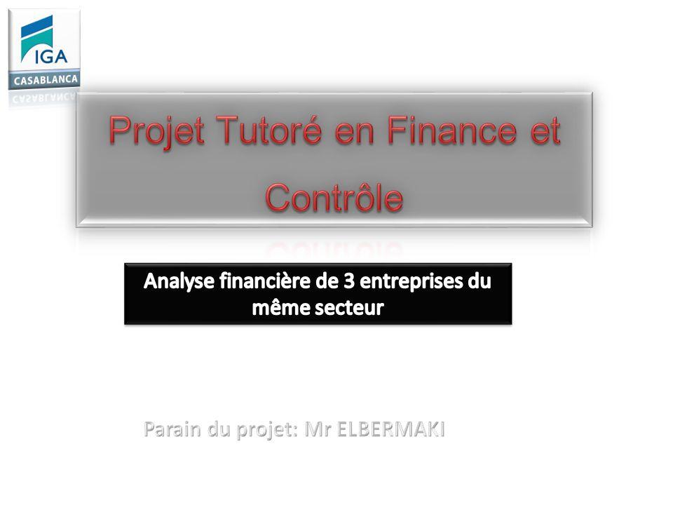 Projet Tutoré en Finance et Contrôle
