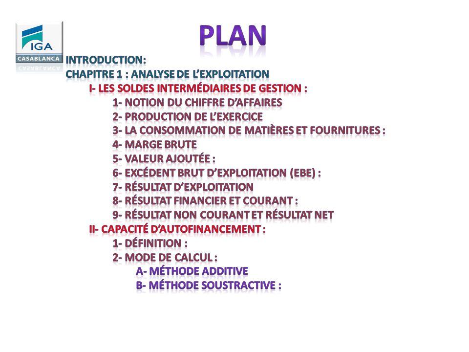Plan Introduction: Chapitre 1 : ANALYSE DE L'EXPLOITATION