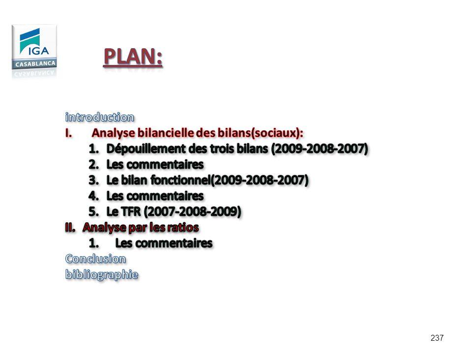 Plan: introduction Analyse bilancielle des bilans(sociaux):