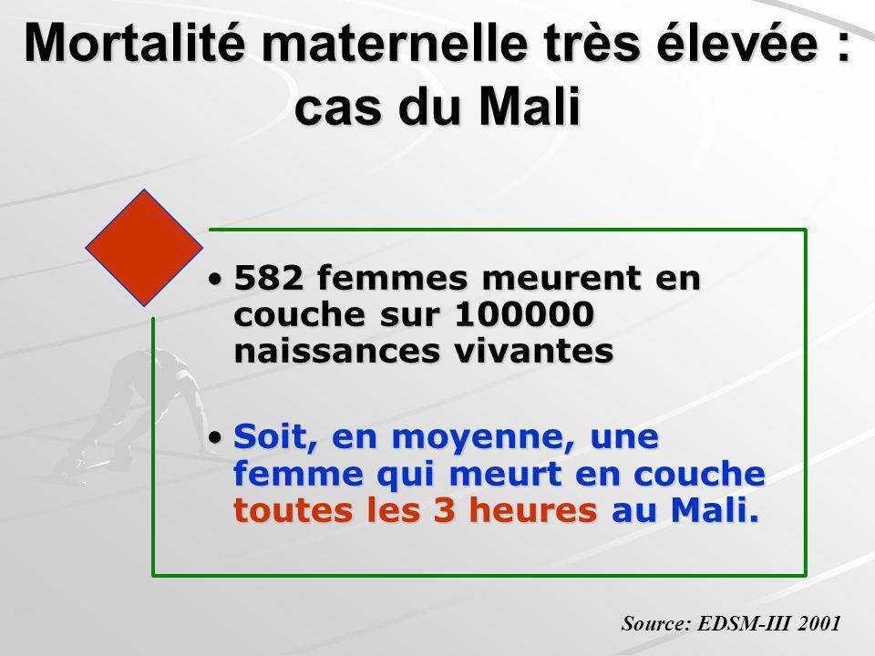 Mortalité maternelle très élevée : cas du Mali