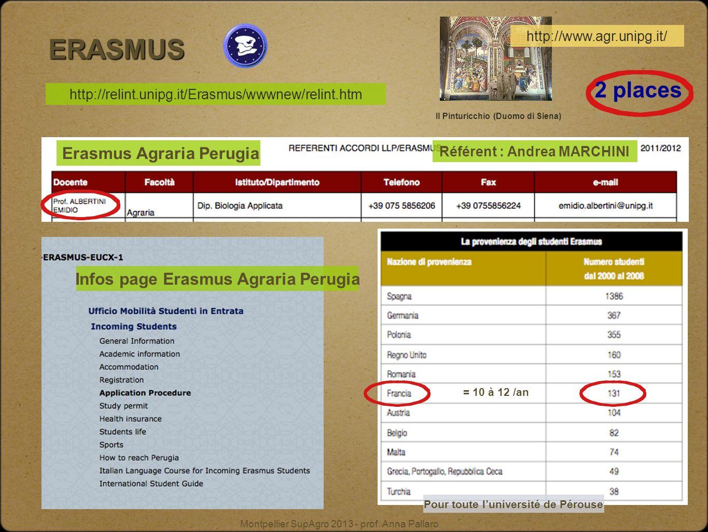 ERASMUS 2 places Erasmus Agraria Perugia