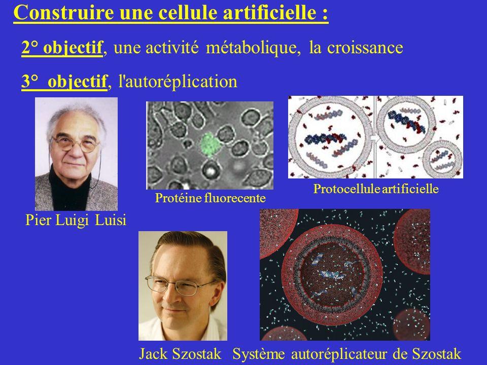 Construire une cellule artificielle :