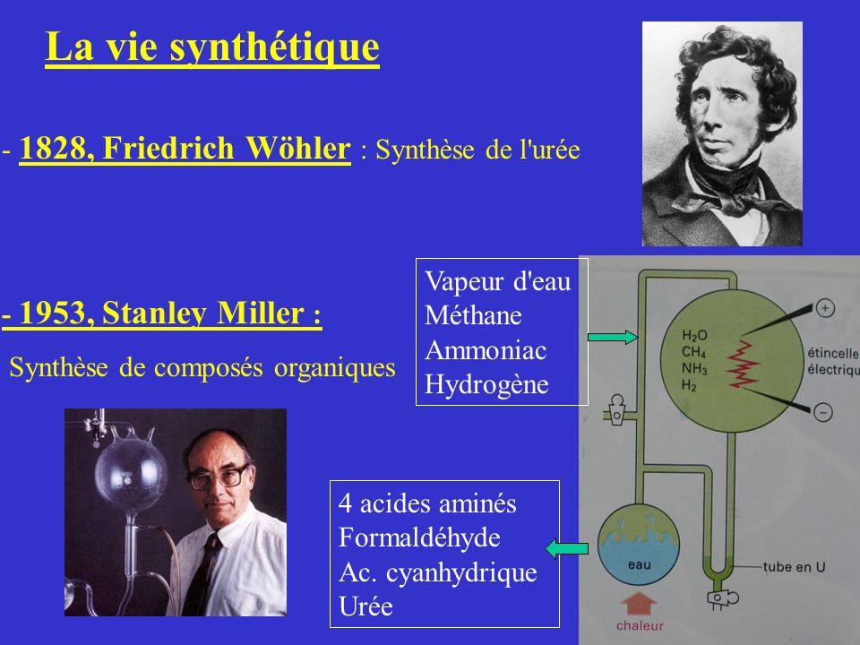 La vie synthétique - 1828, Friedrich Wöhler : Synthèse de l urée