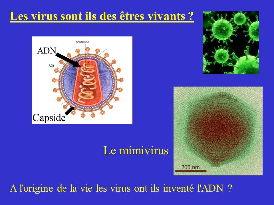 Les virus sont ils des êtres vivants