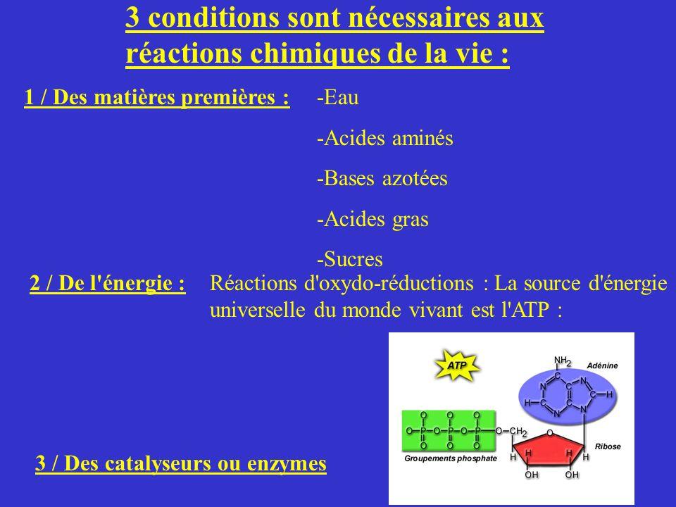 3 conditions sont nécessaires aux réactions chimiques de la vie :