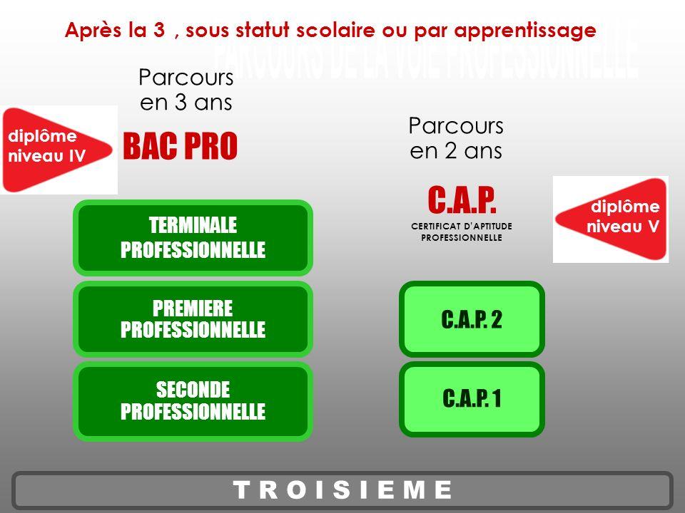 PARCOURS DE LA VOIE PROFESSIONNELLE
