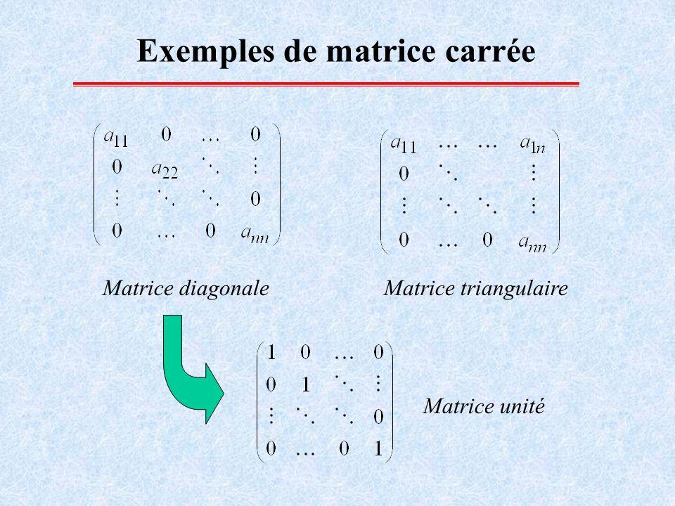 Exemples de matrice carrée