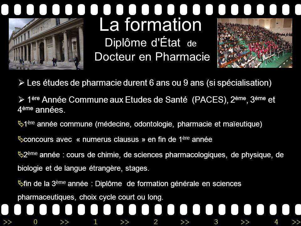 La formation Diplôme d État de Docteur en Pharmacie