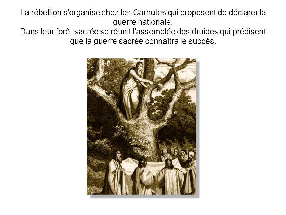 La rébellion s organise chez les Carnutes qui proposent de déclarer la guerre nationale.