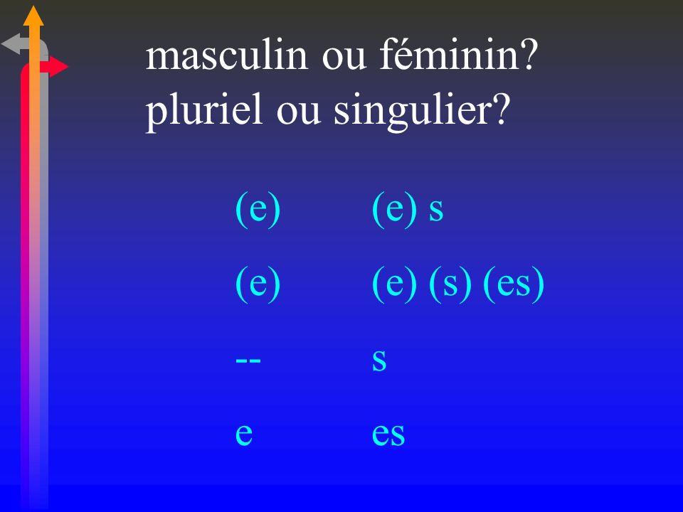 masculin ou féminin pluriel ou singulier (e) (e) s (e) (e) (s) (es)