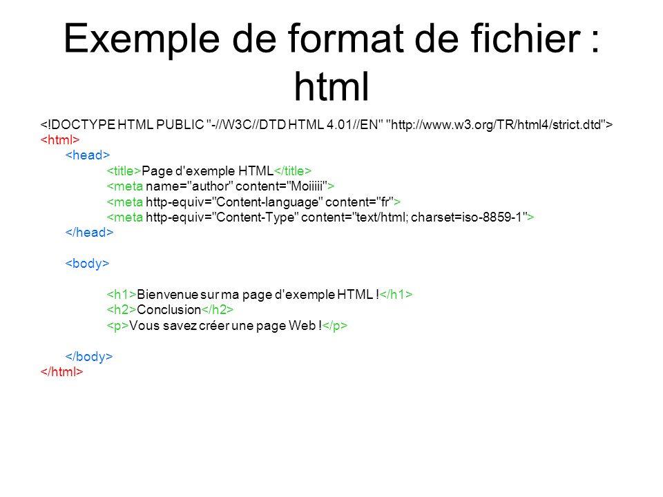 Exemple de format de fichier : html