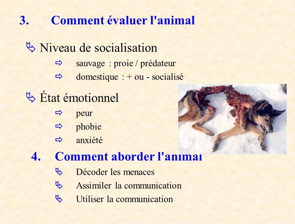 3. Comment évaluer l animal  Niveau de socialisation