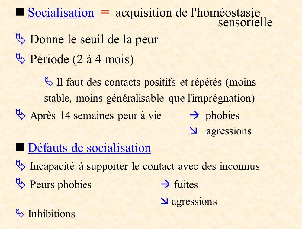  Socialisation = acquisition de l homéostasie sensorielle