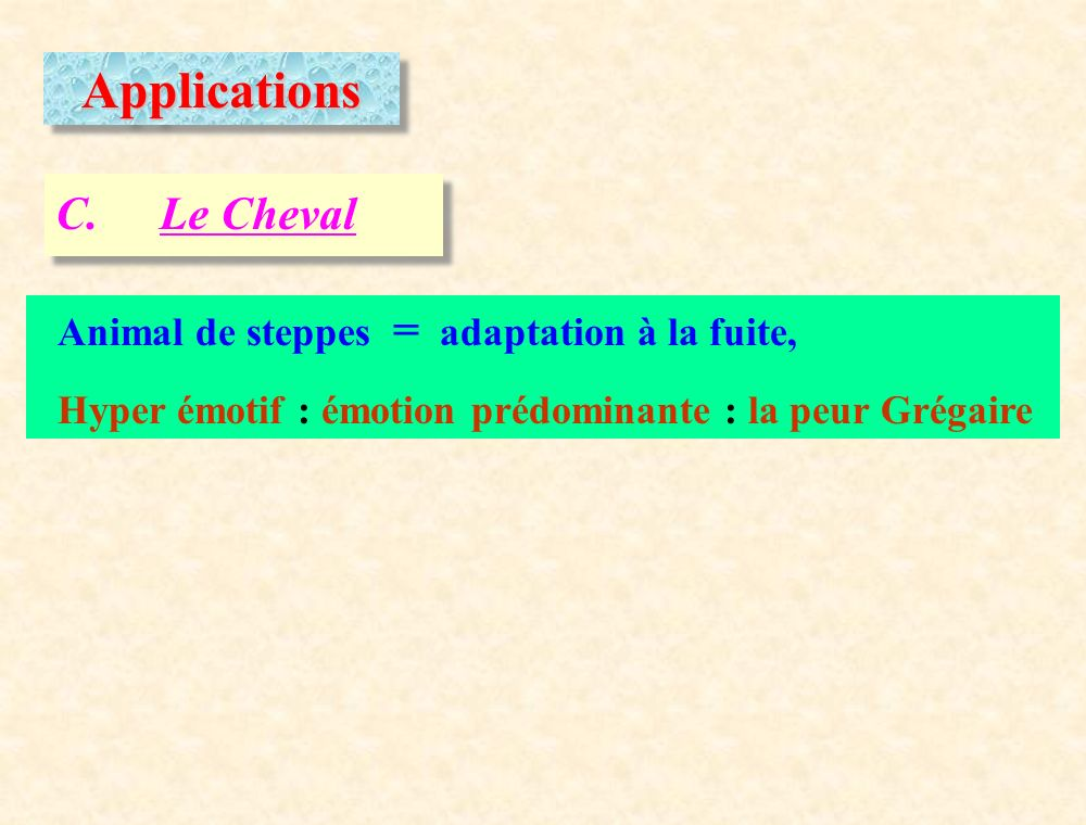 Applications C. Le Cheval Animal de steppes = adaptation à la fuite,