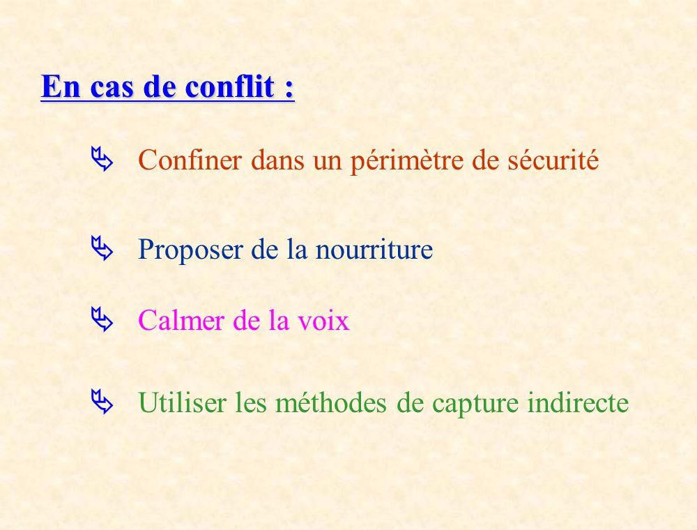 En cas de conflit :  Confiner dans un périmètre de sécurité