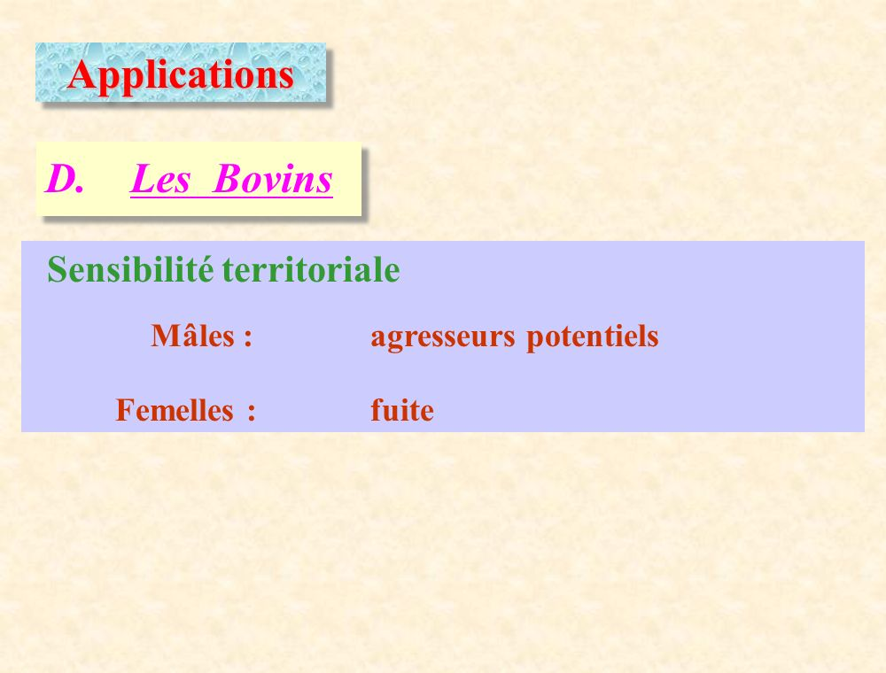 Applications D. Les Bovins Sensibilité territoriale