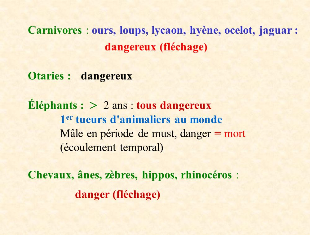 Carnivores : ours, loups, lycaon, hyène, ocelot, jaguar :