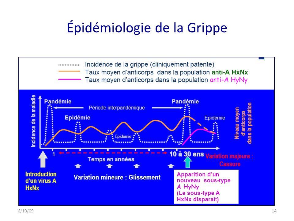 Épidémiologie de la Grippe