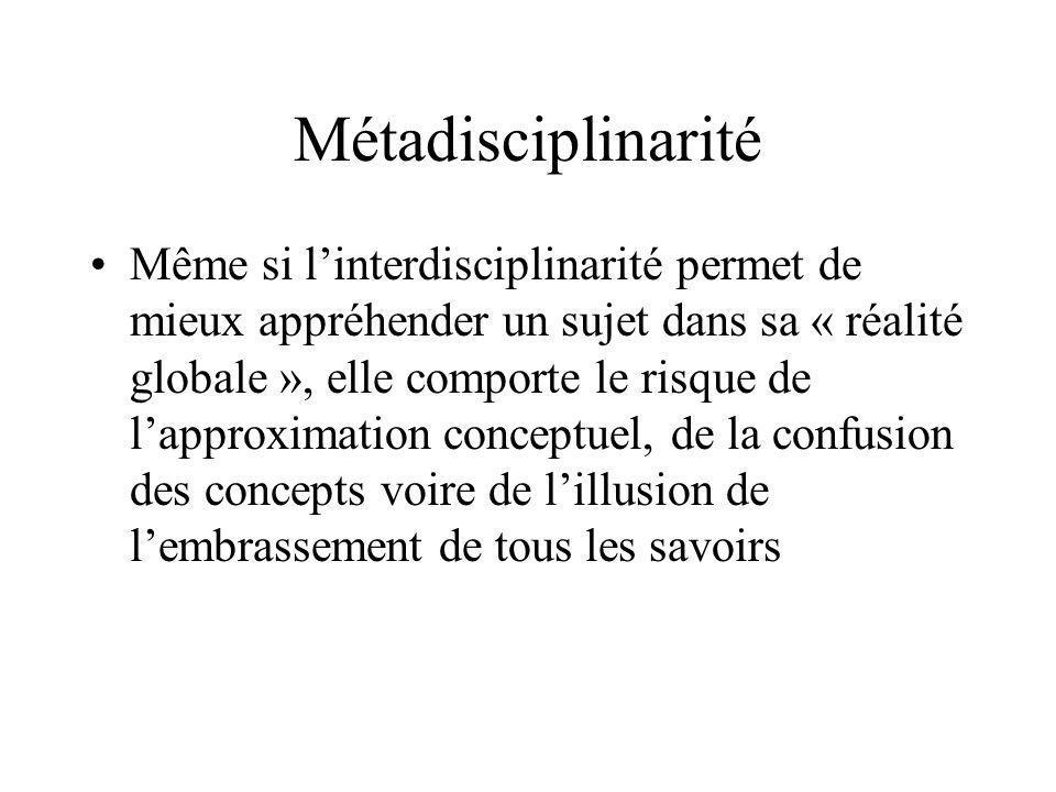 Métadisciplinarité