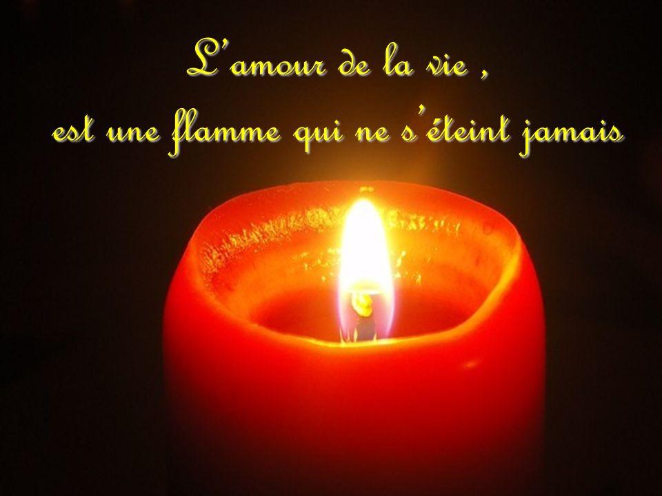 L'amour de la vie , est une flamme qui ne s'éteint jamais