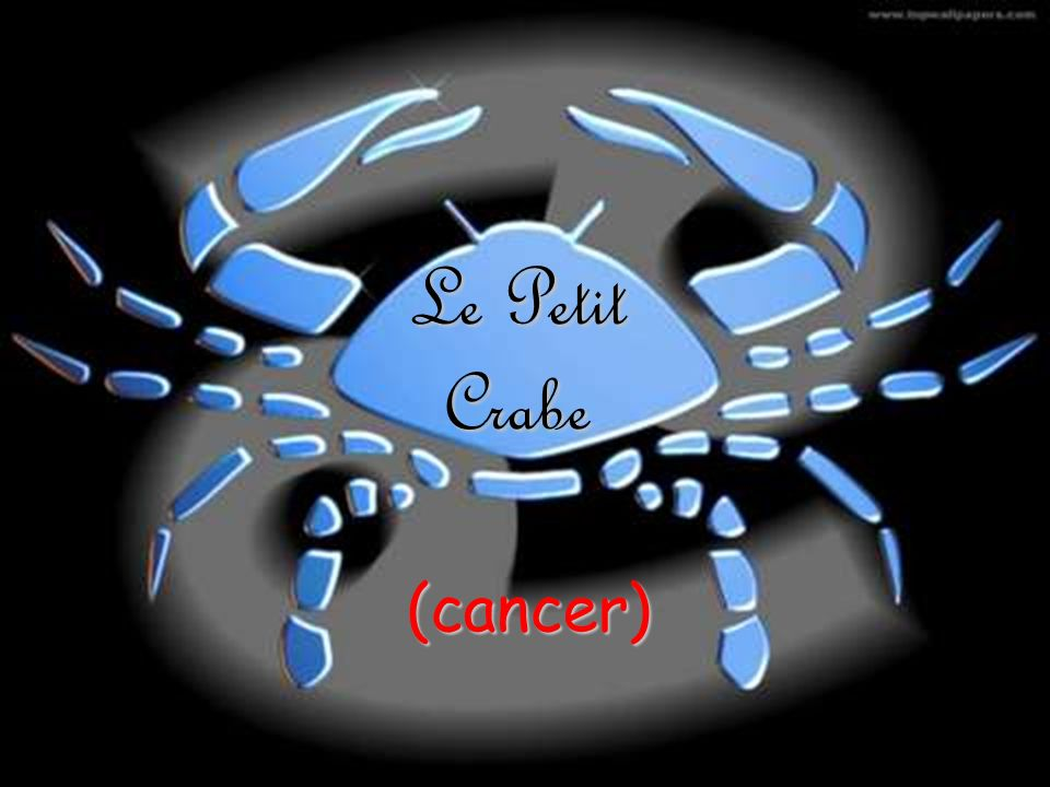 Le Petit Crabe (cancer)