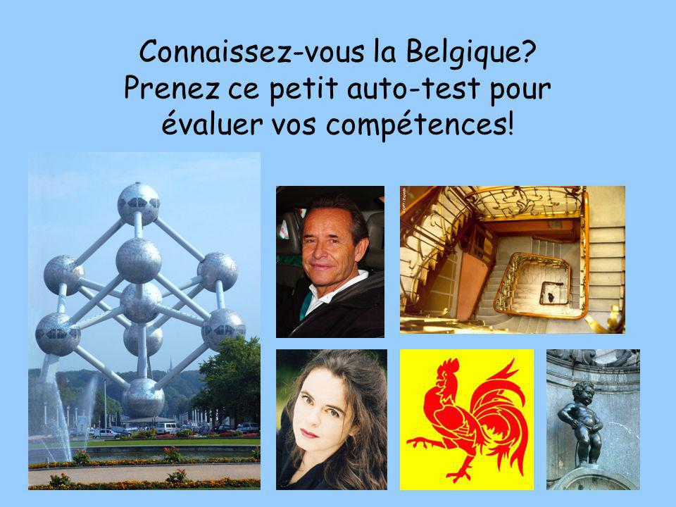 Connaissez-vous la Belgique
