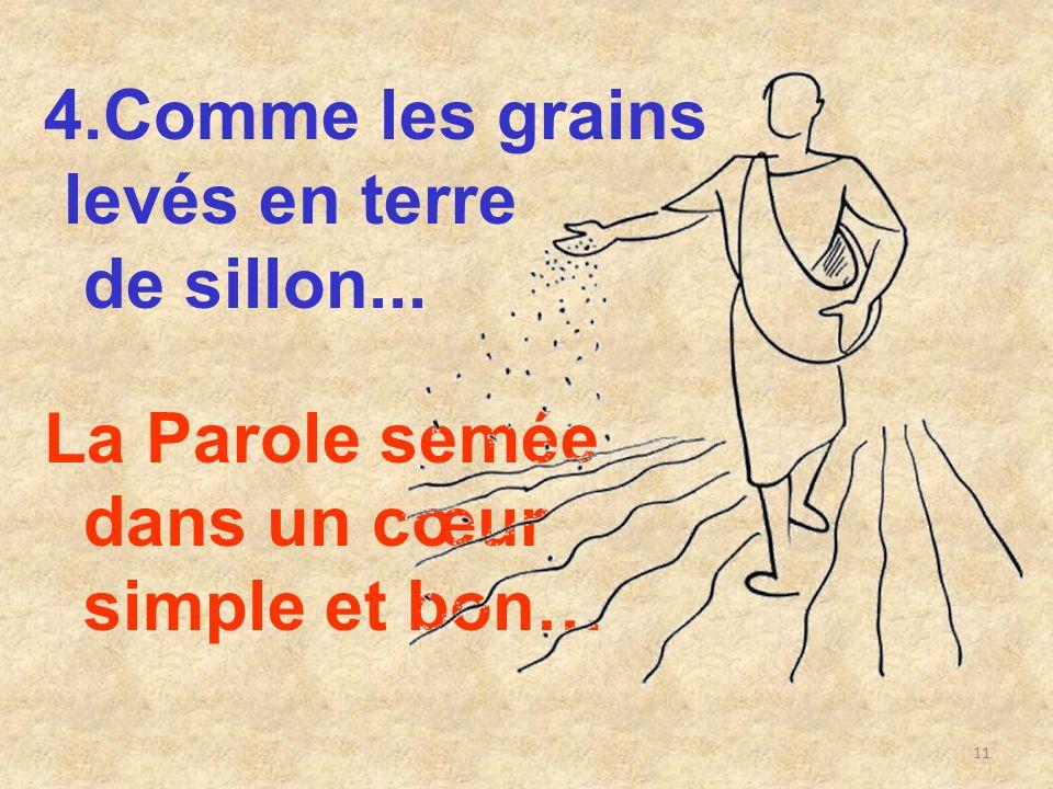 4.Comme les grains levés en terre de sillon... La Parole semée dans un cœur simple et bon…
