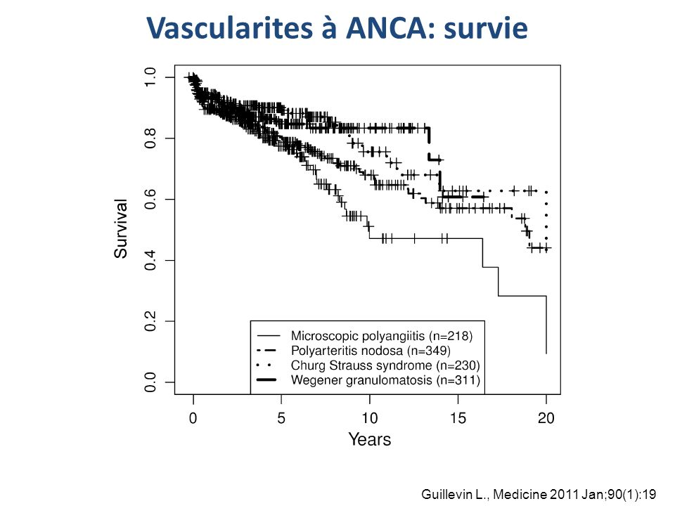 Vascularites à ANCA: survie