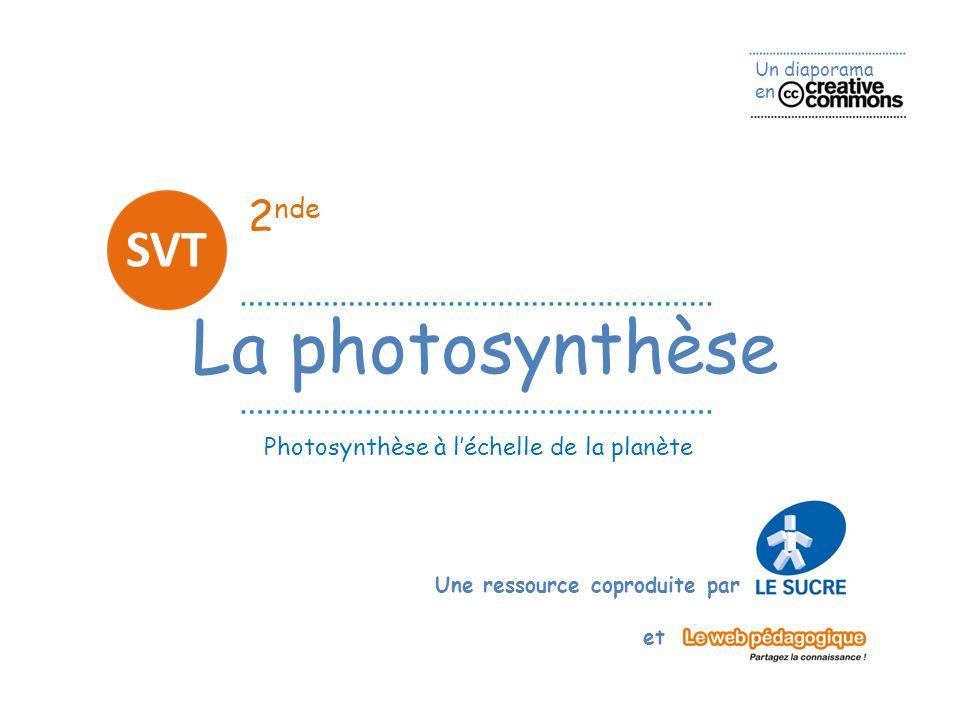 2nde SVT La photosynthèse Photosynthèse à l'échelle de la planète